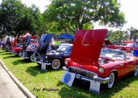 Chasco Car Show New Port Richey